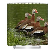 Unexpected Visitors Shower Curtain