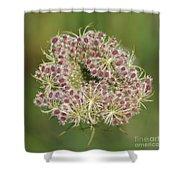 Unfurling Nature Macro Square Shower Curtain