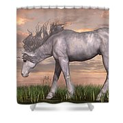 Unicorn And Chipmunk Shower Curtain