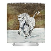 Unicorn Icelandic Shower Curtain
