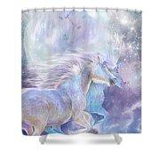 Unicorn Soulmates Shower Curtain