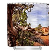 Unique Desert Beauty At Kodachrome Park In Utah Shower Curtain