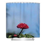 Unique Flower Shower Curtain
