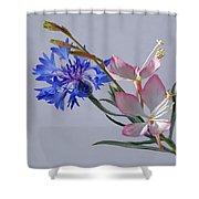 Uniquely Arranged Shower Curtain