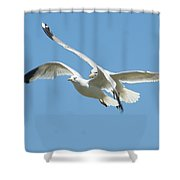 United We Fly Shower Curtain