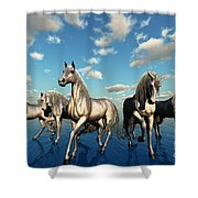 Unity Shower Curtain by Corey Ford