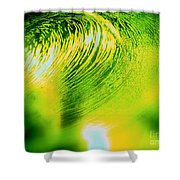 Universal Convergence Shower Curtain