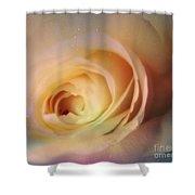 Universal Rose Shower Curtain