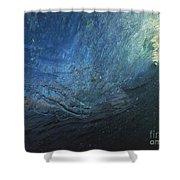 Universal Test Shower Curtain