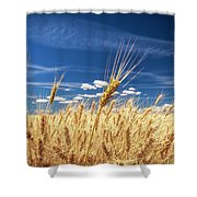 Unruly Beauty Shower Curtain