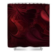 Untitled 1-26-10 Reds Shower Curtain