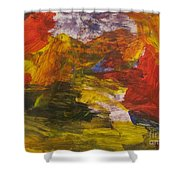 Untitled 113 Original Painting Shower Curtain