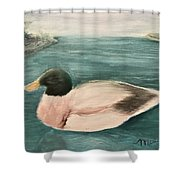 Quack, Quack Shower Curtain
