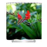 Unusual Flower 1 Shower Curtain