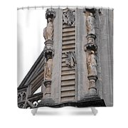 Up And Down Jacobs Ladder Shower Curtain