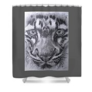 Up Close Clouded Leopard Shower Curtain