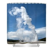 Up Rising Shower Curtain