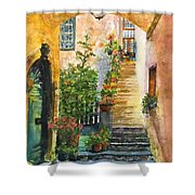 Up The Stone Staircase Shower Curtain