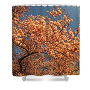 Up To The Cherry Flowers Shower Curtain