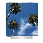 Up To The Sky Palms Shower Curtain