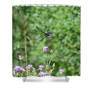 Up, Up And Away-black Swallowtail Butterfly Shower Curtain