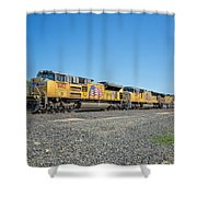 Up8412 Shower Curtain
