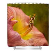 Uplifting Lily Shower Curtain