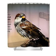 Uplifting215 Shower Curtain