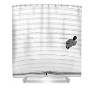 Upon The Oculus Stairs Shower Curtain