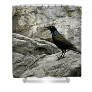 Upon The Rocks Shower Curtain