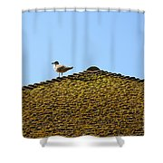Upon The Roof Shower Curtain