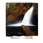 Upper Butte Creek Falls Shower Curtain