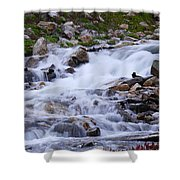 Upper French Creek 2 Shower Curtain