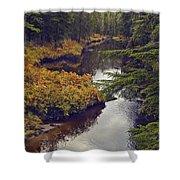 Upper Salamander Creek Shower Curtain