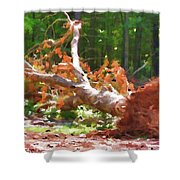 Uprooted Trees Shower Curtain