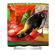 Upside Down Oriole Shower Curtain