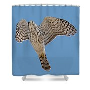 Upward Shower Curtain