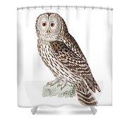 Ural Owl Shower Curtain