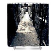 Urban Alley Shower Curtain