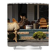 Urban Elk Shower Curtain
