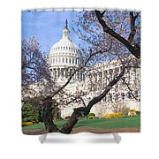 Us Capitol Building And Cherry Shower Curtain