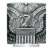 Us Dollar Eagle Shower Curtain