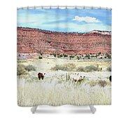 Utah 7 Shower Curtain