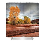 Utah Desert Wash Shower Curtain