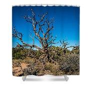 Utah Juniper Shower Curtain