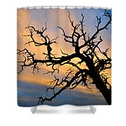 Utah Sunset Shower Curtain