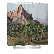 Utah Valley Shower Curtain