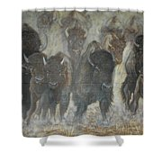 Uttc Buffalo Mural Center Panel Shower Curtain