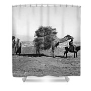 Uzbekistan: Caravan, C1910 Shower Curtain