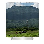 Vacas De Ahuachapan 4 Shower Curtain